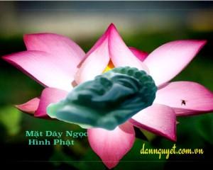 Mặt Phật Ngọc – Cao Cấp